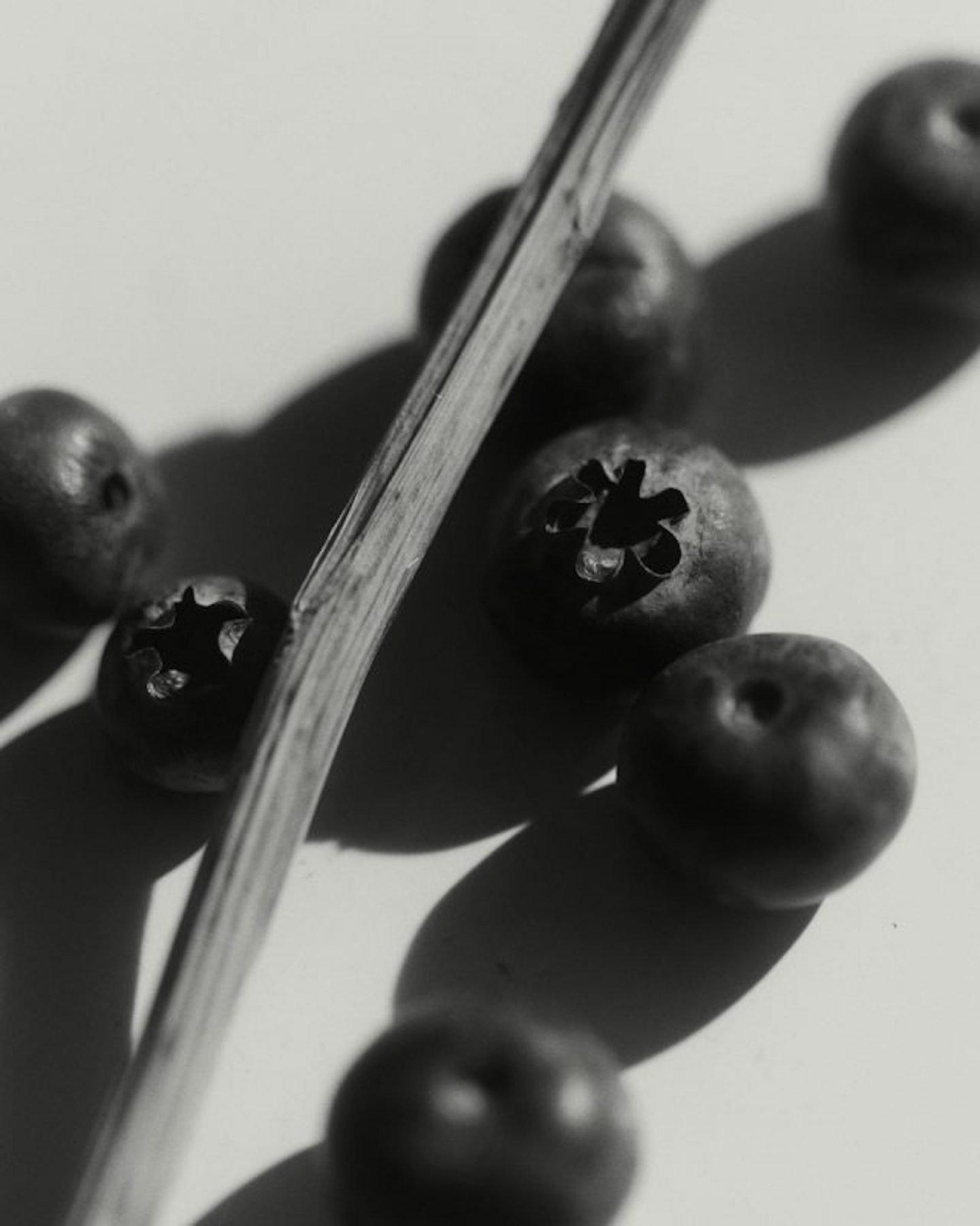 IGNANT-Photography-Ryan-Jenq-015