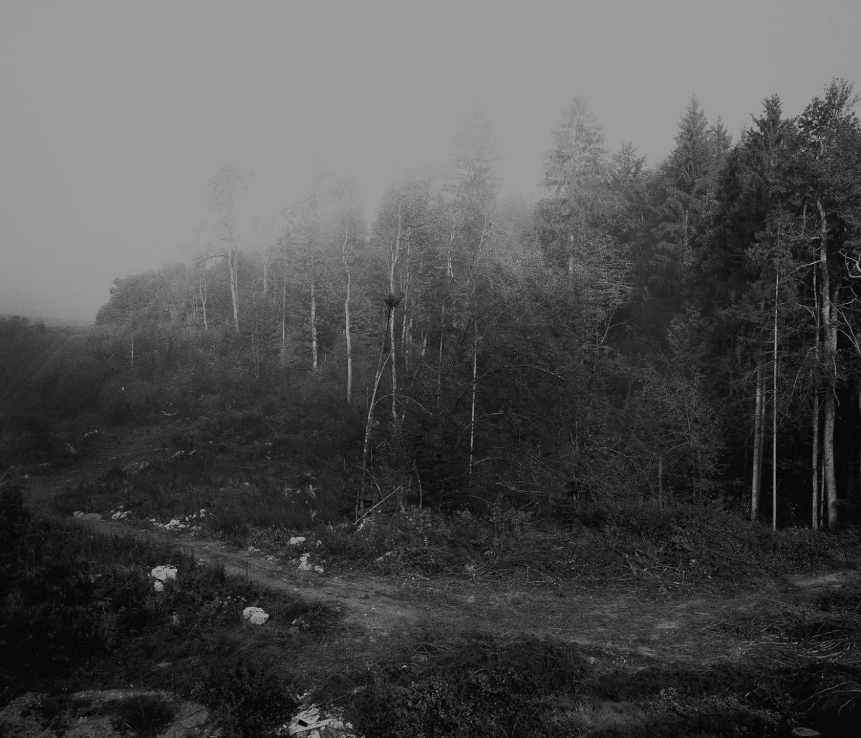 IGNANT-Art-Photography-Jošt Dolinšek-14