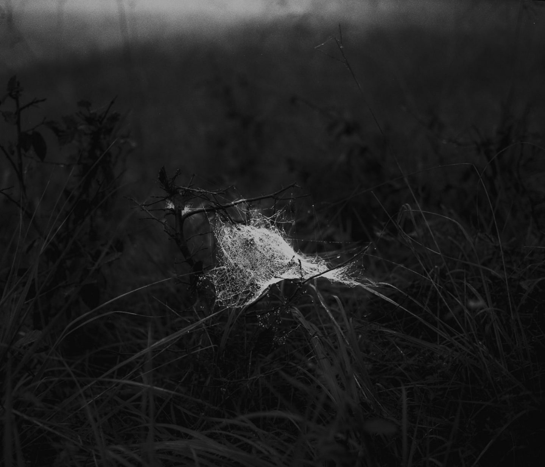 IGNANT-Art-Photography-Jošt Dolinšek-8