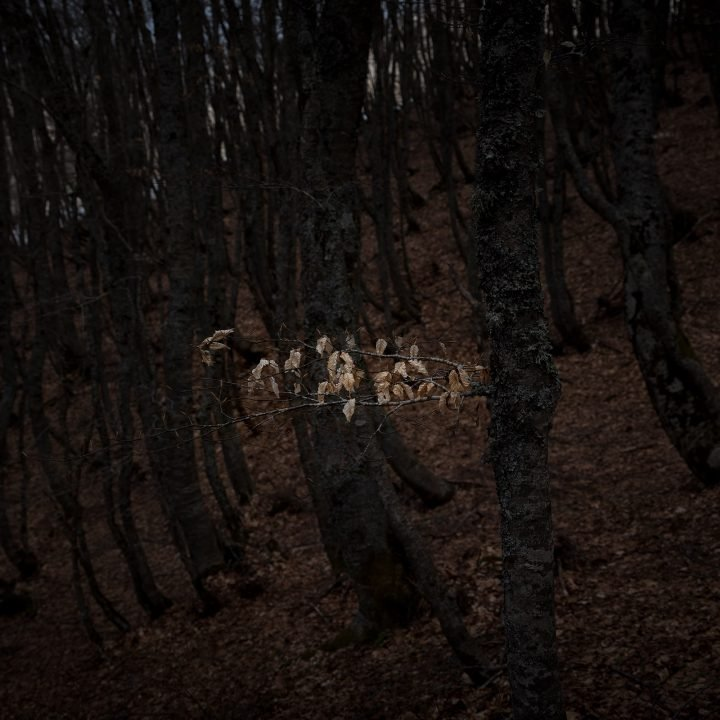 IGNANT-Photography-Alberto-Selvestrel-05