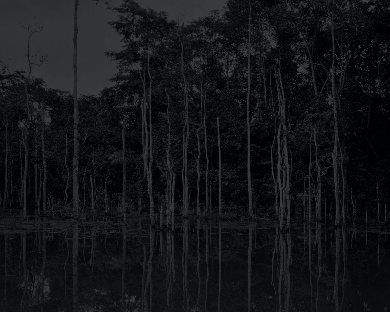 IGNANT-Photography-Elliott-Verdier-02
