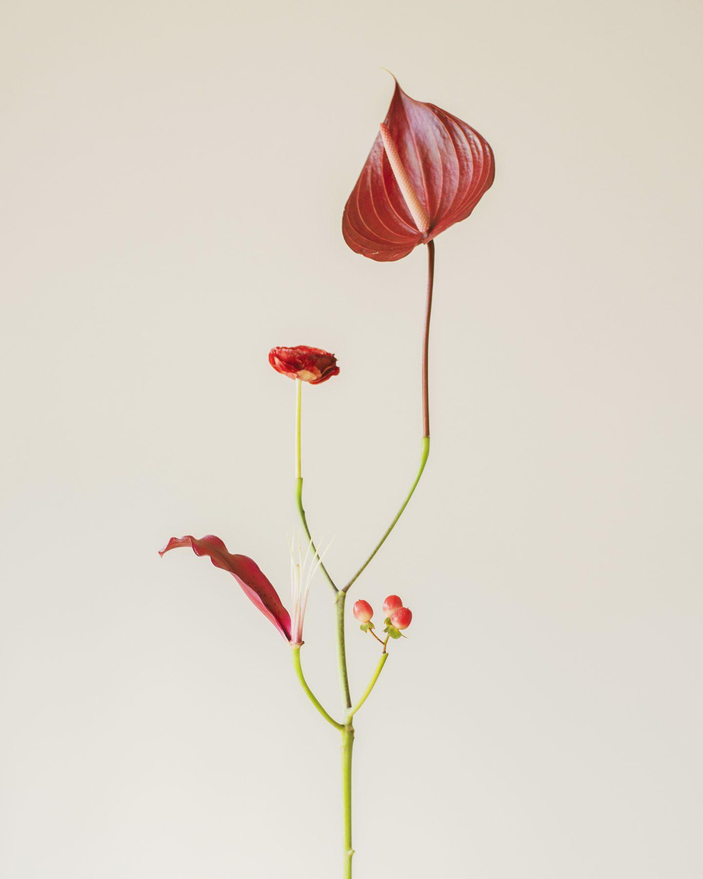 IGNANT-Photography-Jennifer-Latour-04