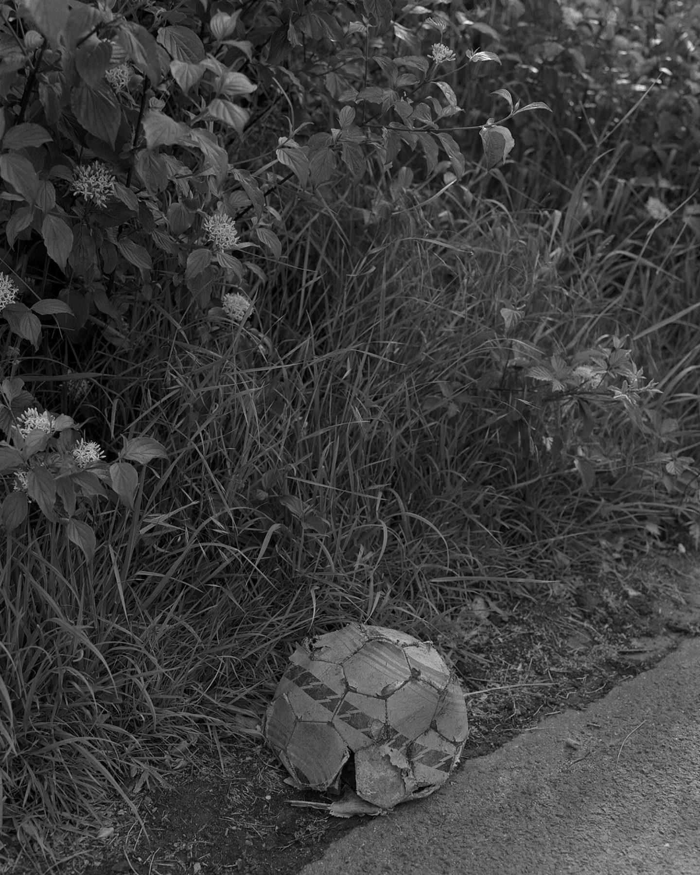 IGNANT-Photography-Sadie-Catt-Beekeeper-02