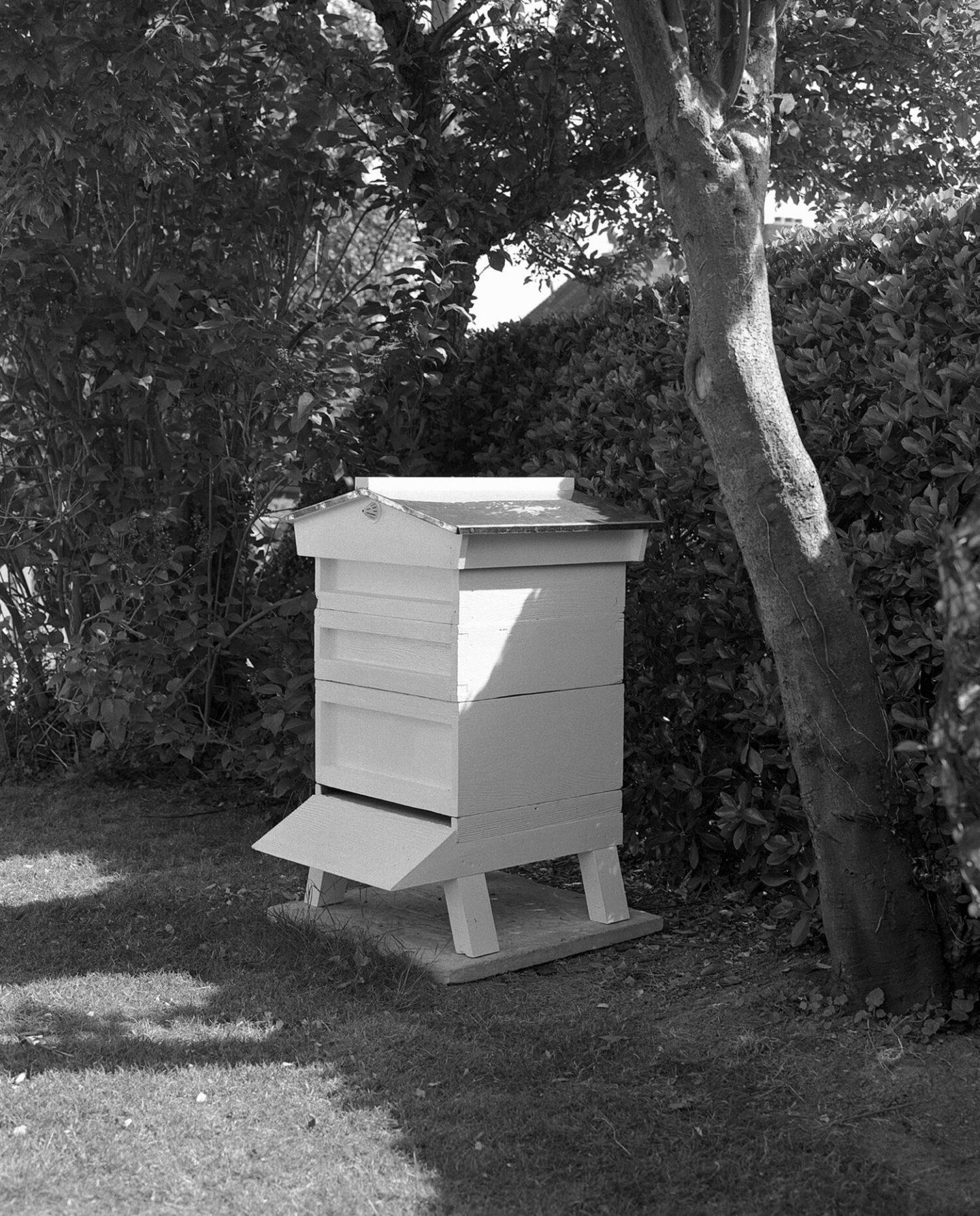 IGNANT-Photography-Sadie-Catt-Beekeeper-03