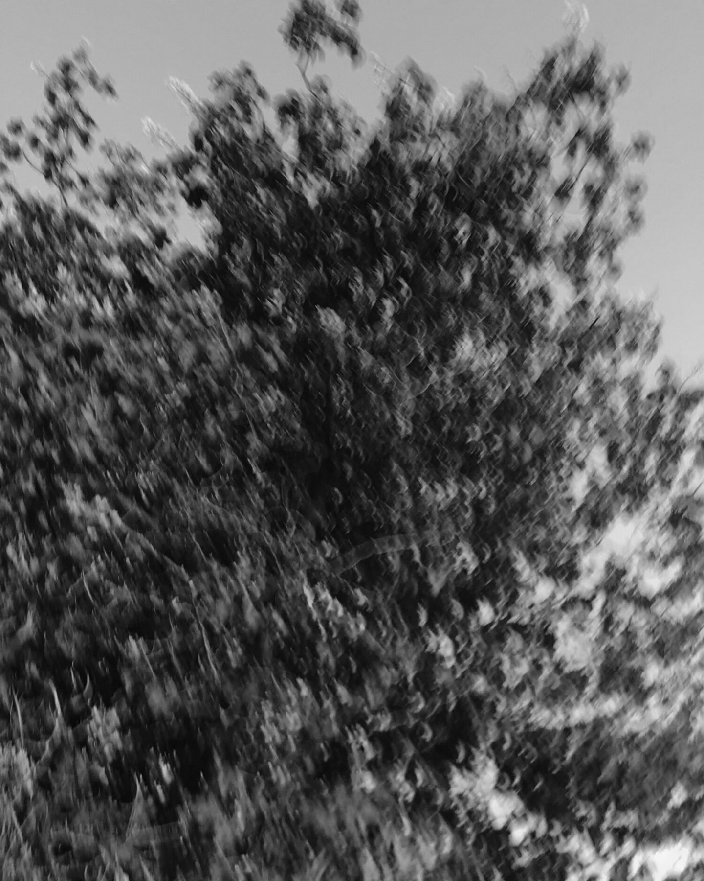 IGNANT-Photography-Sadie-Catt-Beekeeper-06