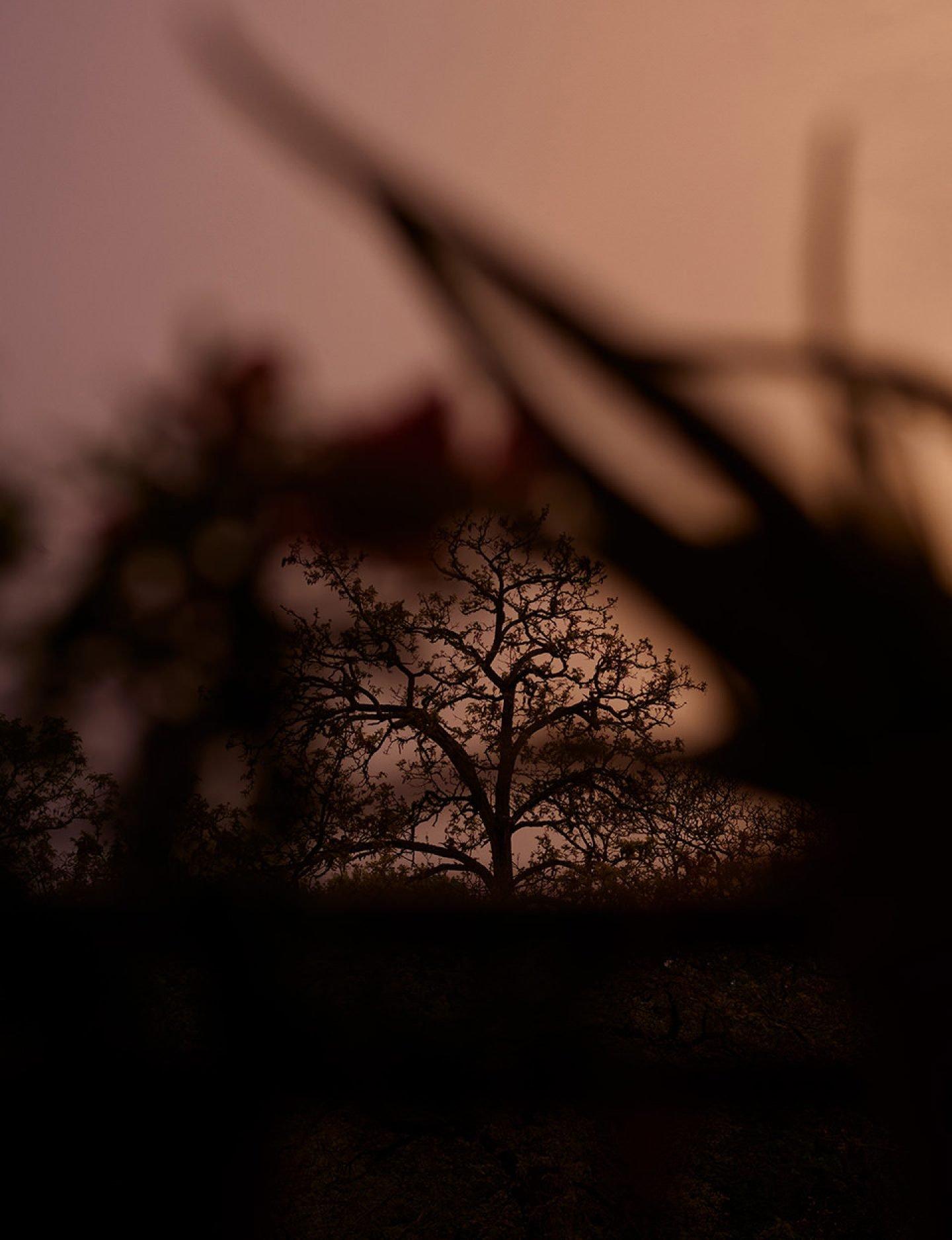 IGNANT-Photography-Gruenberger-ALetterToAFriend-1