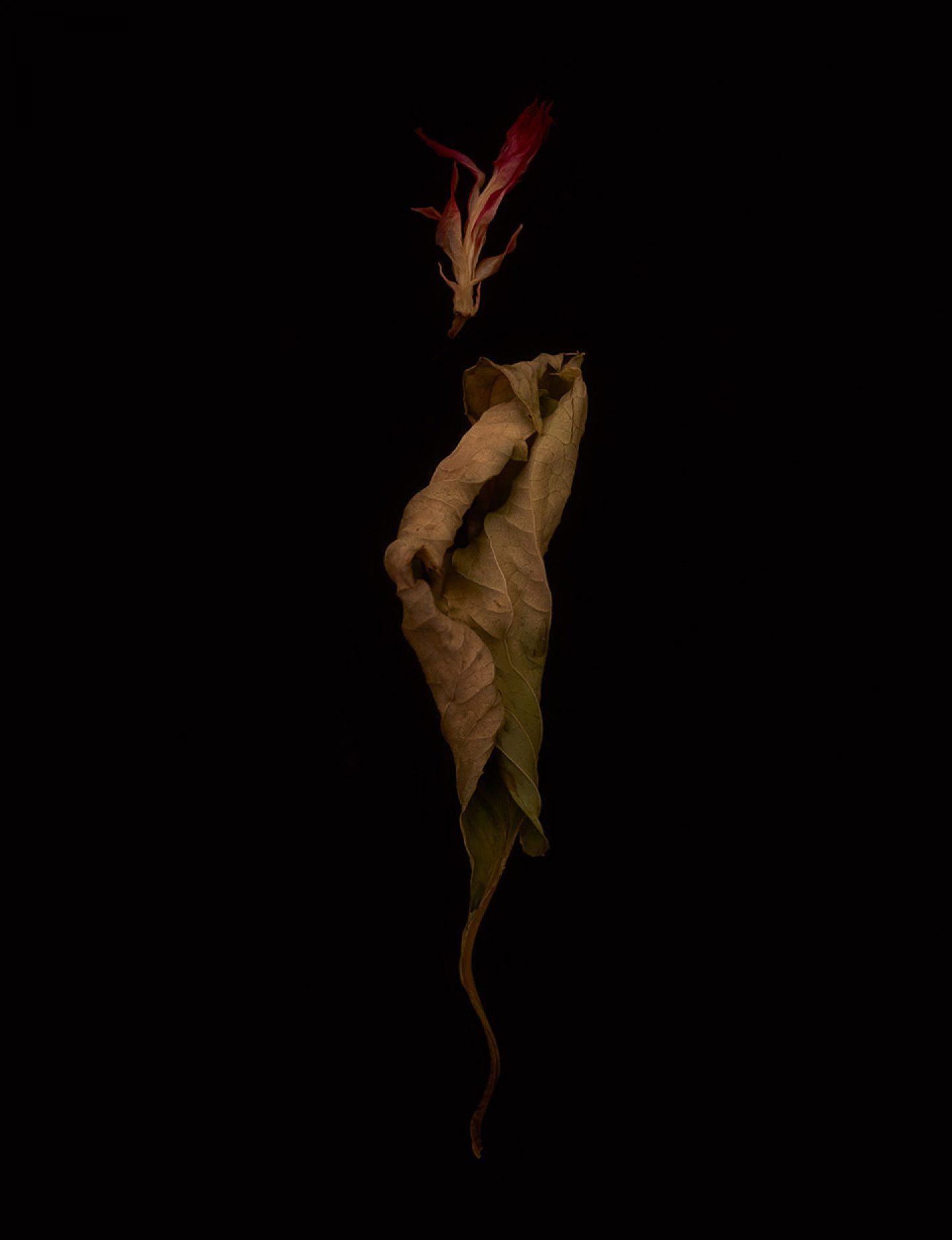 IGNANT-Photography-Gruenberger-ALetterToAFriend-17